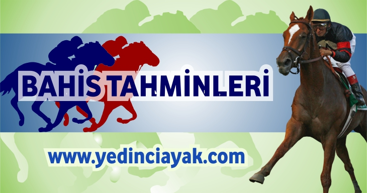 http://yedinciayak.com/